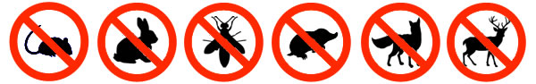 Commercial Pests