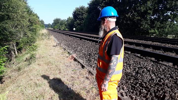 For Network Rail - Rabbit removal from the mainline by Olde English Pest Control Kent.