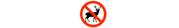 Deer Managment, Culling and Control by Olde english pest control kent